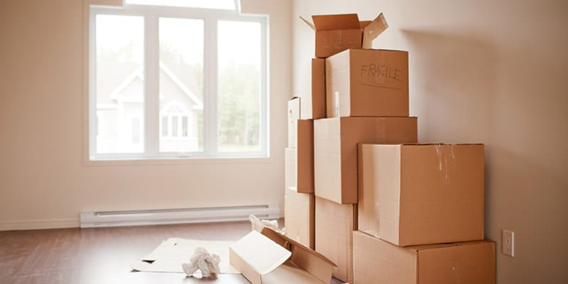 Orland Park child removal lawyer